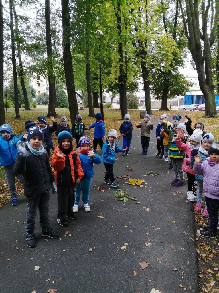 Zajęcia w parku - drzewa i ich owoce